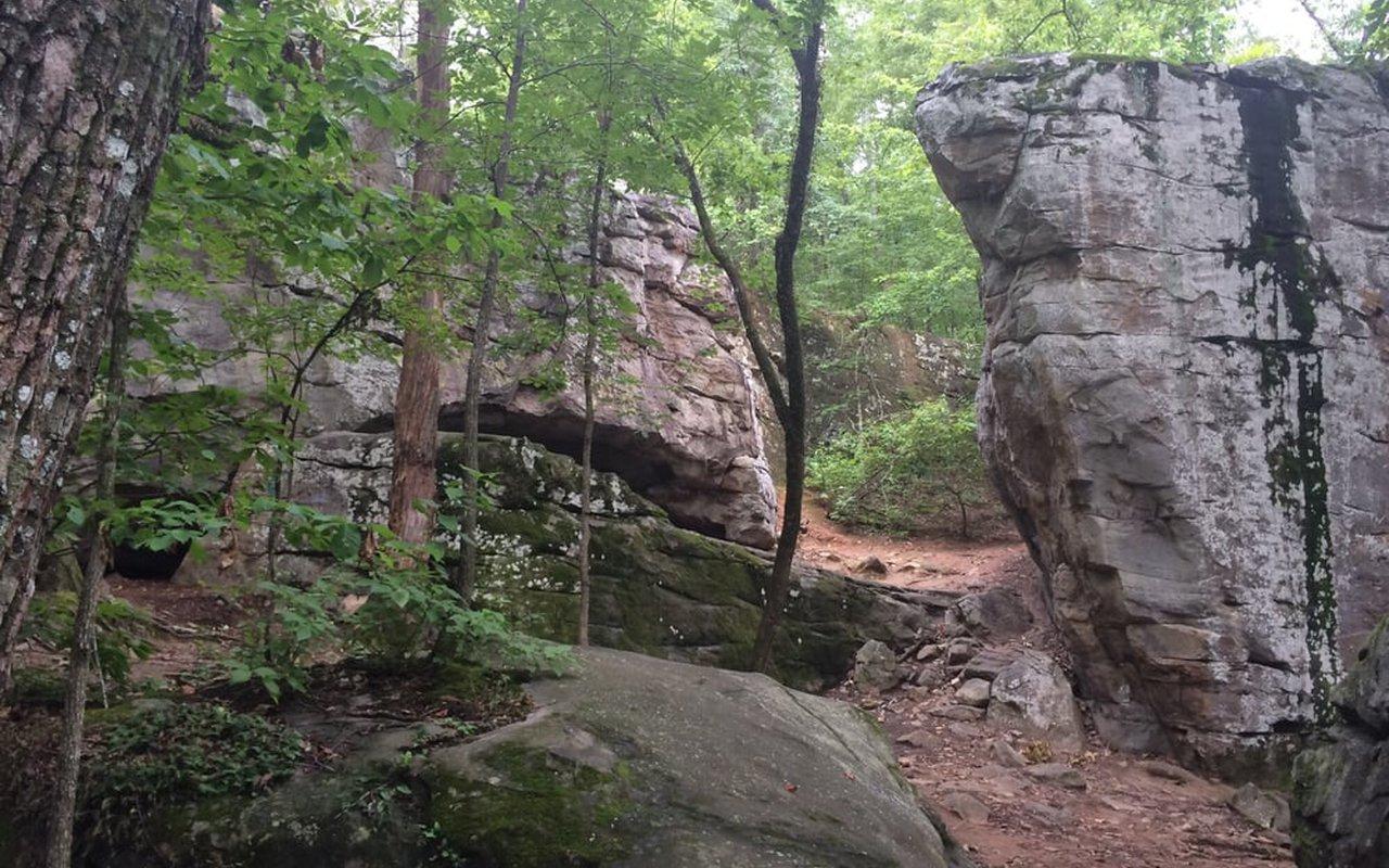 AWAYN IMAGE Moss Rock Preserve & Waterfalls