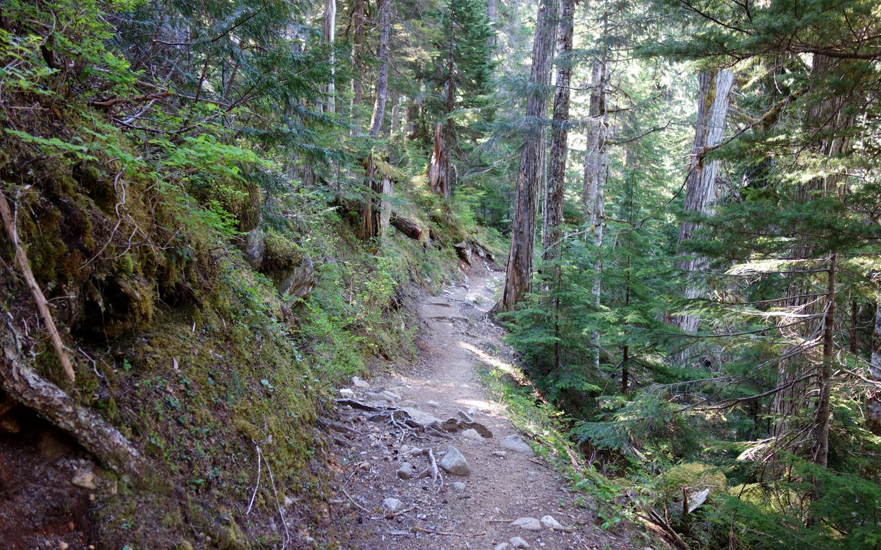 AWAYN IMAGE Lake DorothyKing County Hike