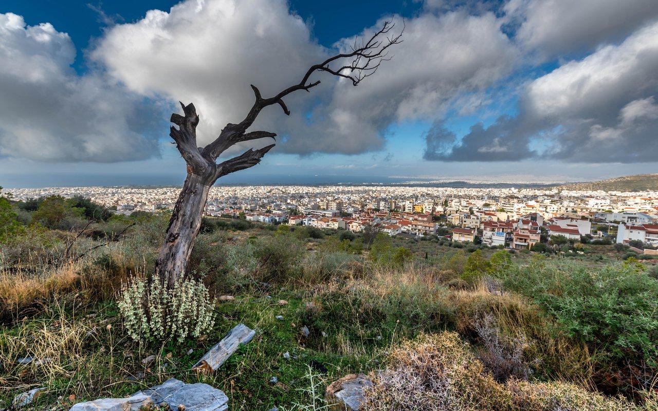 AWAYN IMAGE Hike to Hymettus Mountain