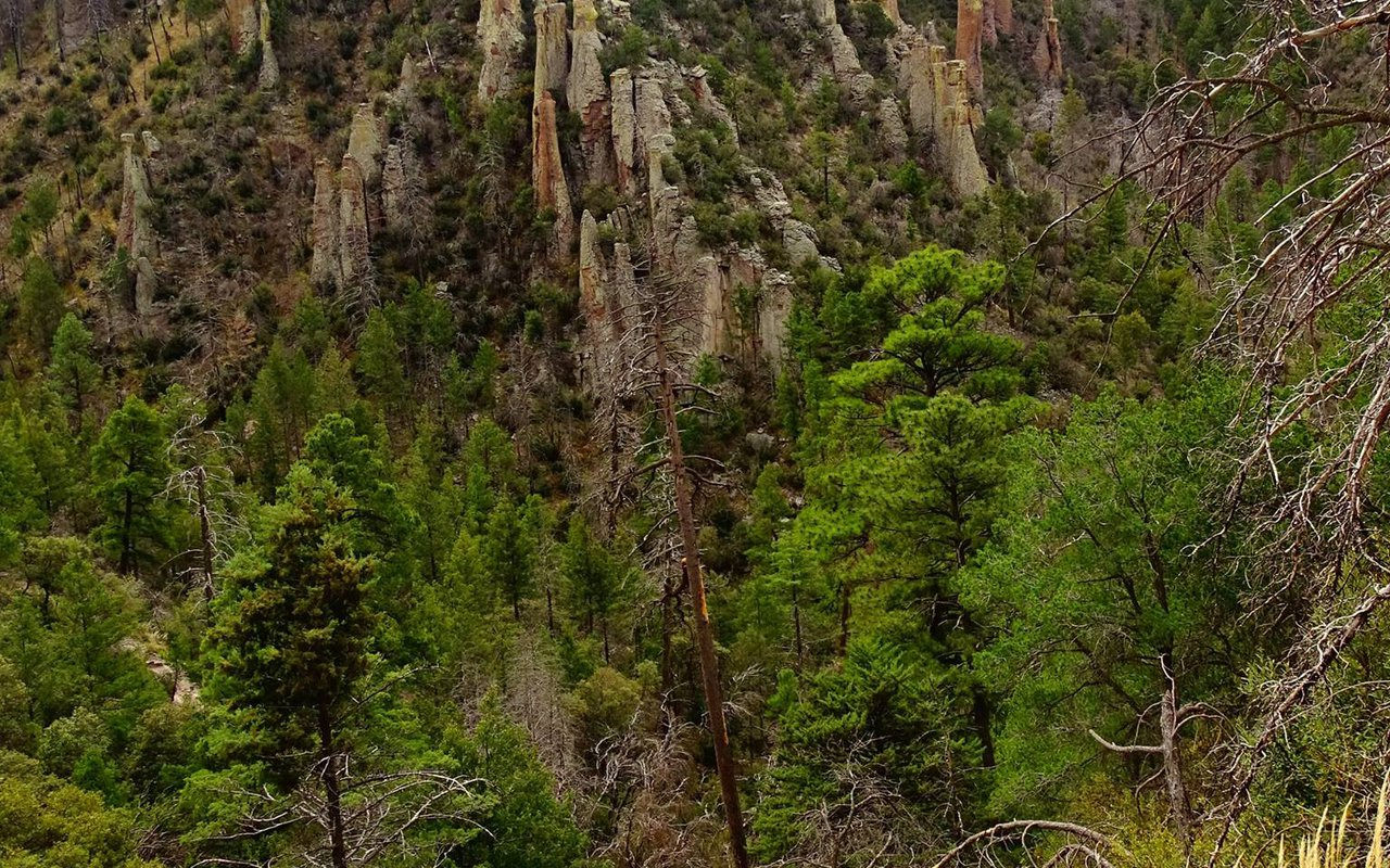 AWAYN IMAGE Chiricahua National Monument-: Hike