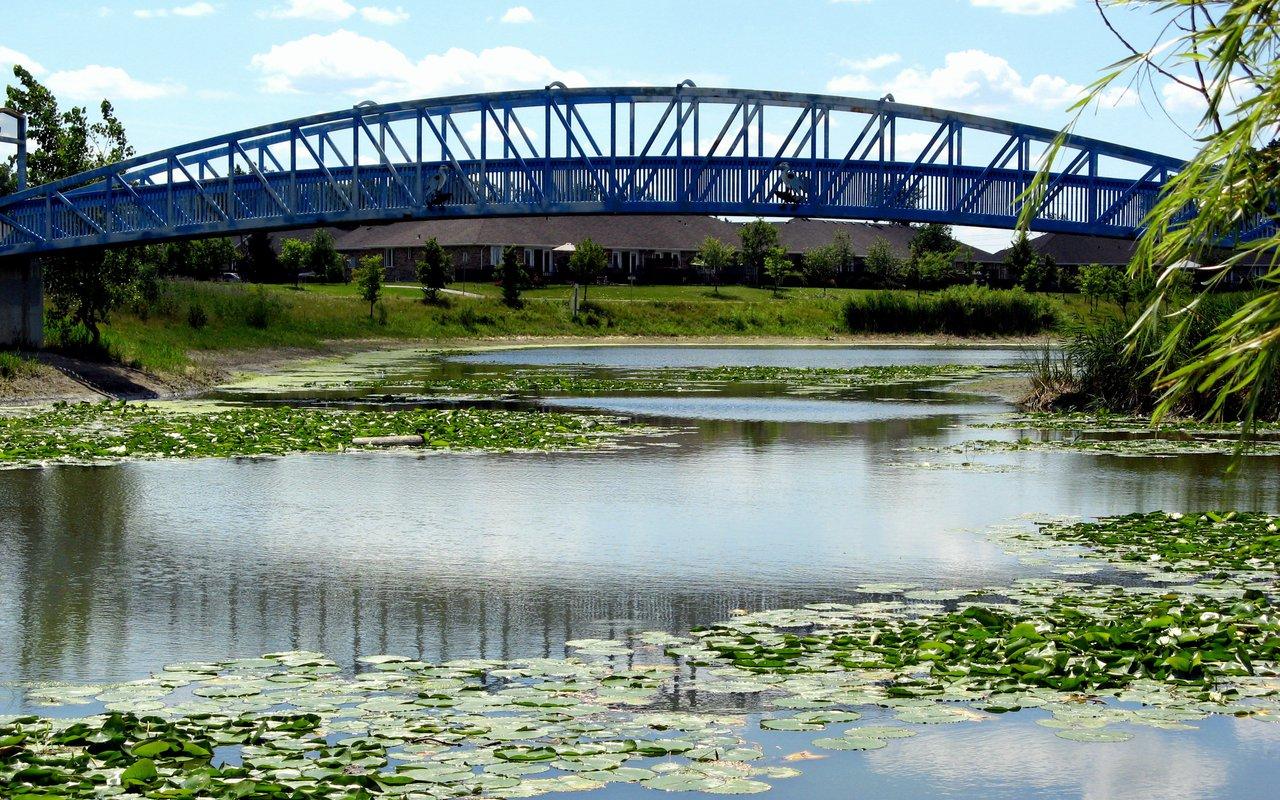 AWAYN IMAGE Go For Snorkeling In The Blue Heron Bridge