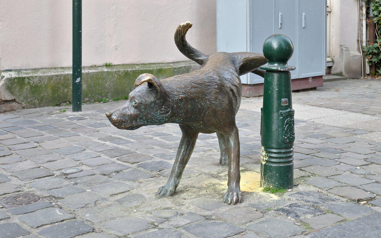 AWAYN IMAGE Zinneke Pis Brussels Adventure