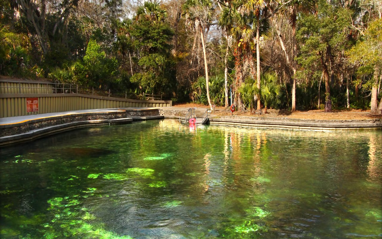 AWAYN IMAGE Swim and Cool Off at Wekiwa Springs in Florida