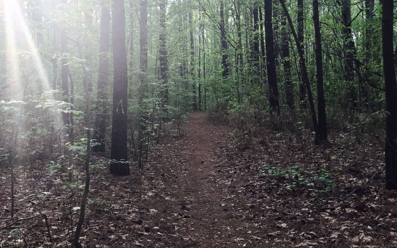 AWAYN IMAGE Indian River Park Trail