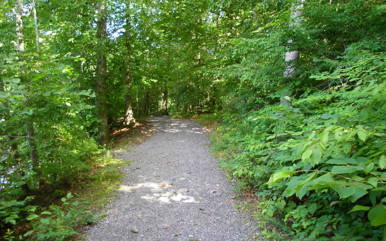 AWAYN IMAGE Stroll in Beaverdam Park