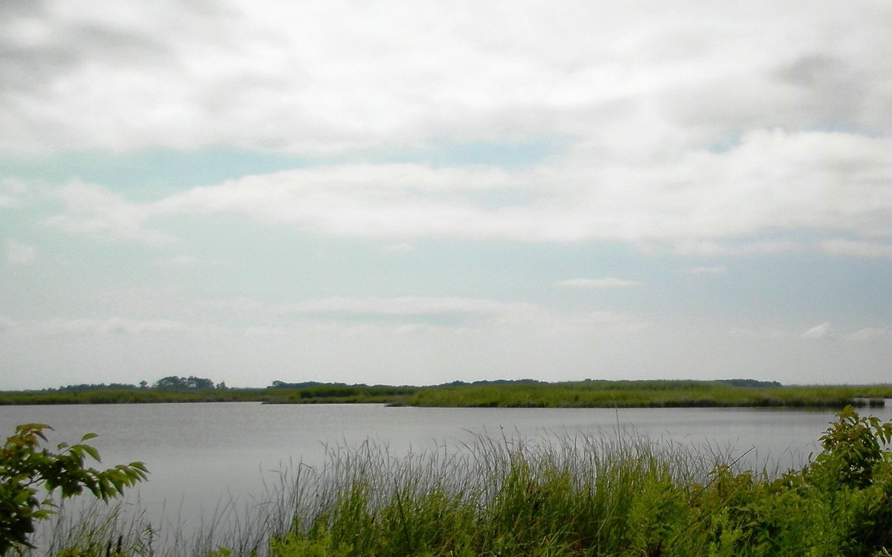 AWAYN IMAGE East and West Dike Back Bay National Wildlife Refuge