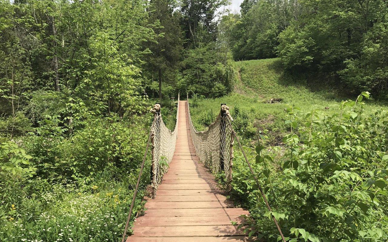 AWAYN IMAGE Flat Fork Ridge Trail