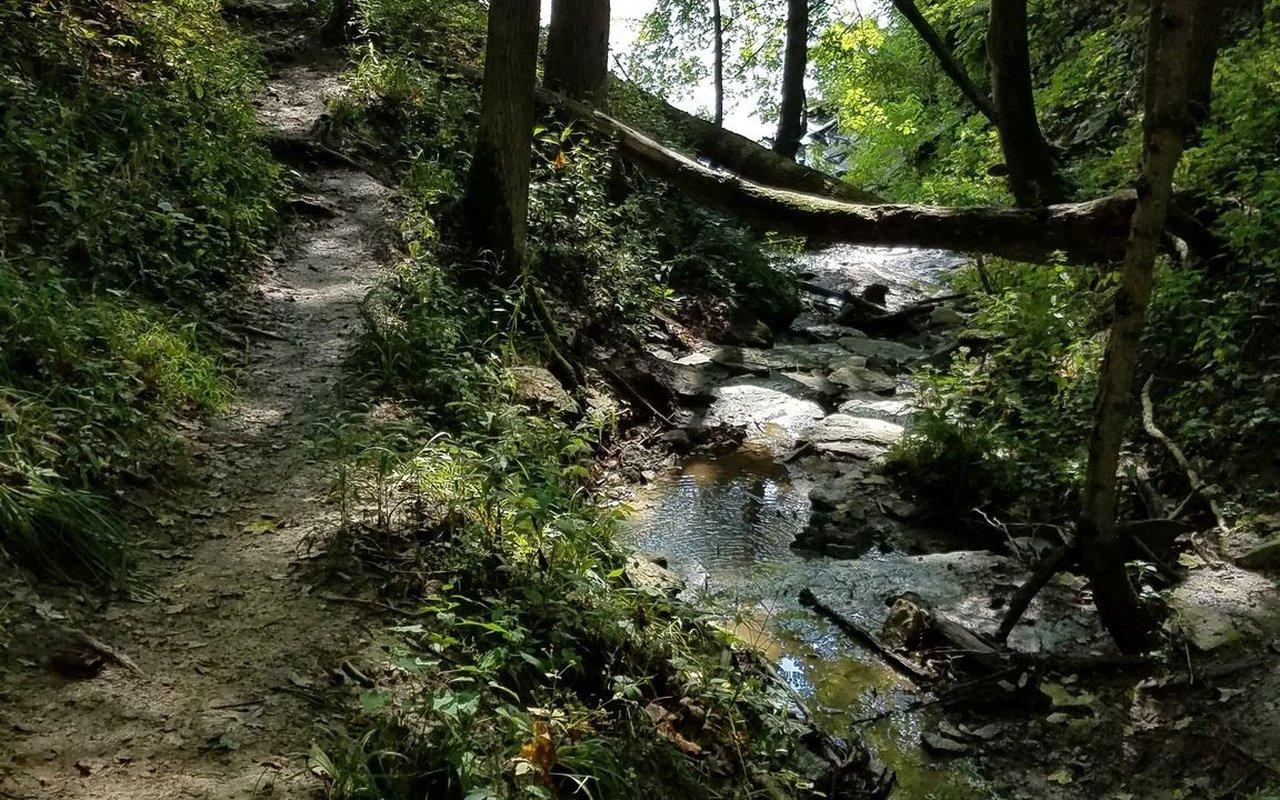 AWAYN IMAGE Adena Loop Trail