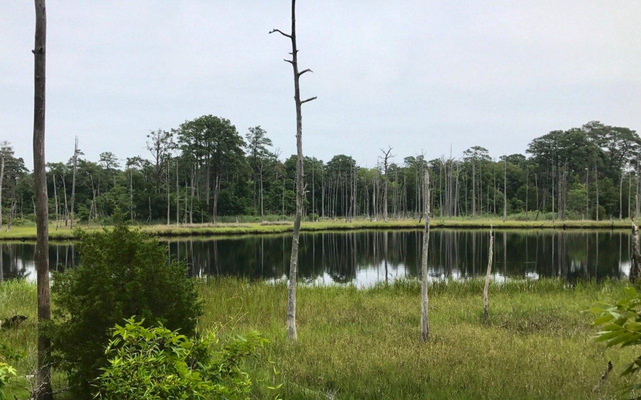 AWAYN IMAGE First Landing Loop Trail