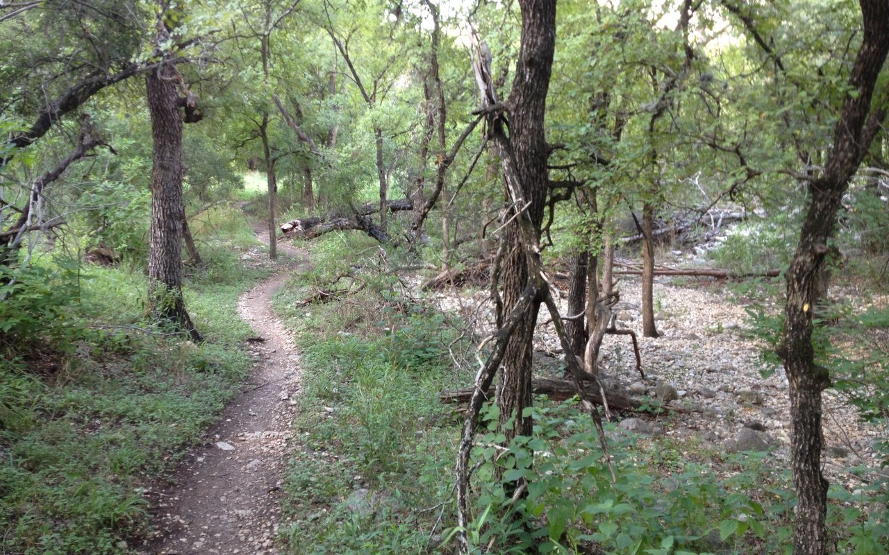 AWAYN IMAGE Geology Trail Salado Greenway Trail from Hardberger Park