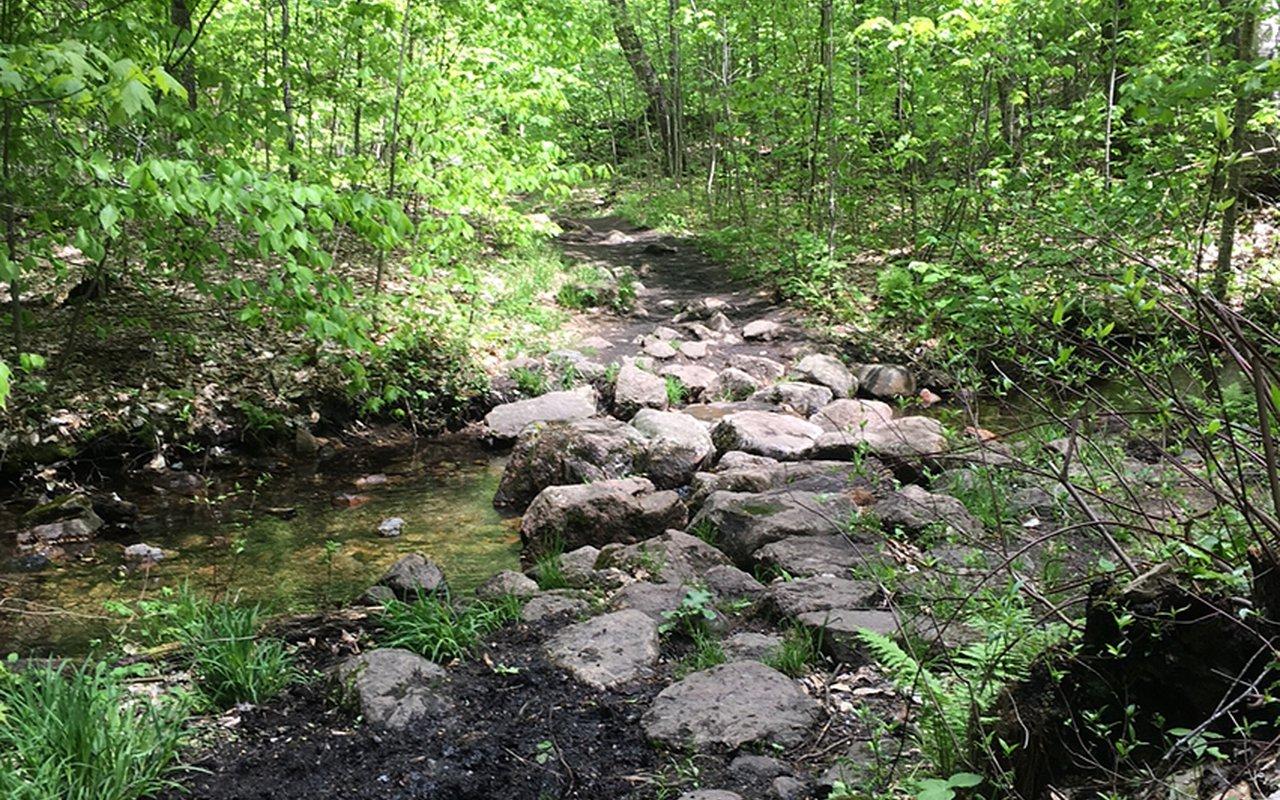 AWAYN IMAGE Hiking in Wolf Trail (Blanchet 62) Loop