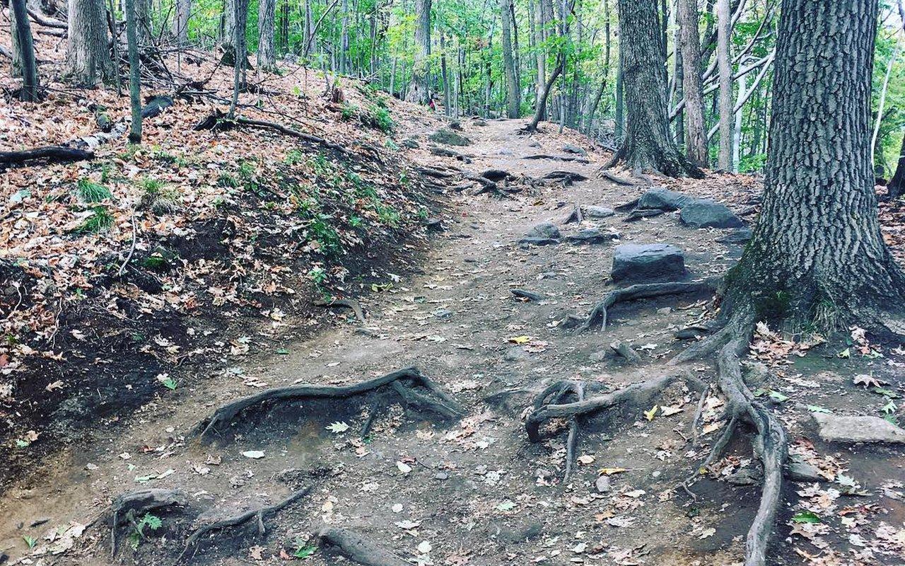 AWAYN IMAGE Hike to Le Pain De Sucre