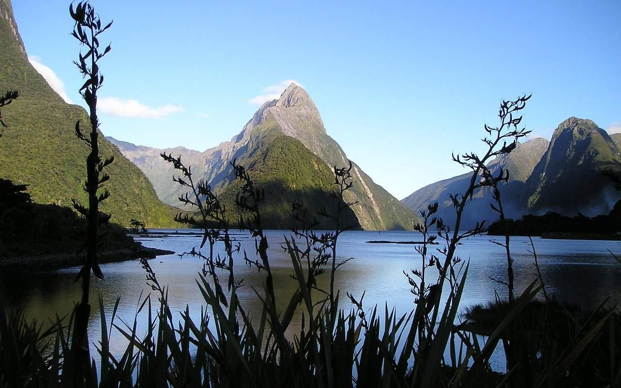 AWAYN IMAGE Milford Track-Fiordland national park
