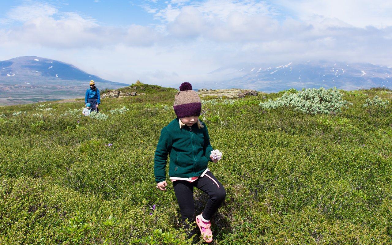 AWAYN IMAGE Thingvellir (Þingvellir) Park