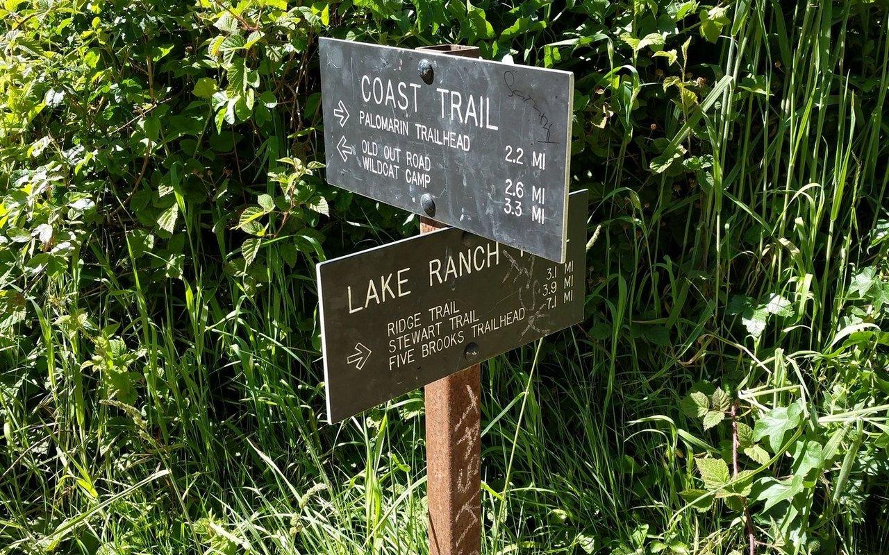AWAYN IMAGE Hike Palomarin Trailhead
