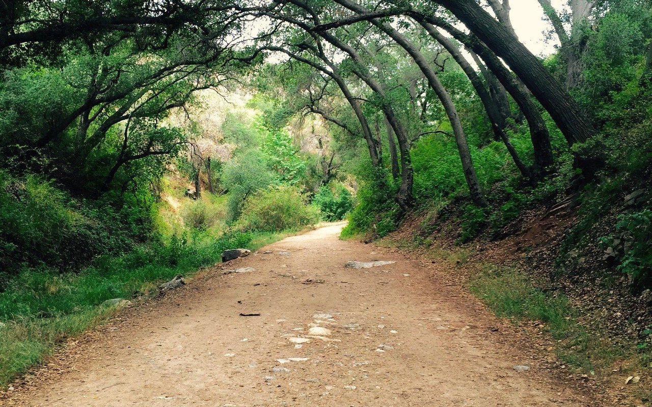 AWAYN IMAGE Hike in Claremont Hills Wilderness