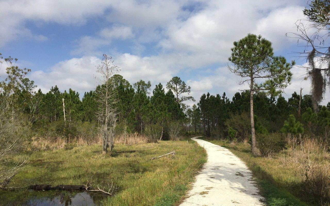 AWAYN IMAGE Pine Island Hike Loop