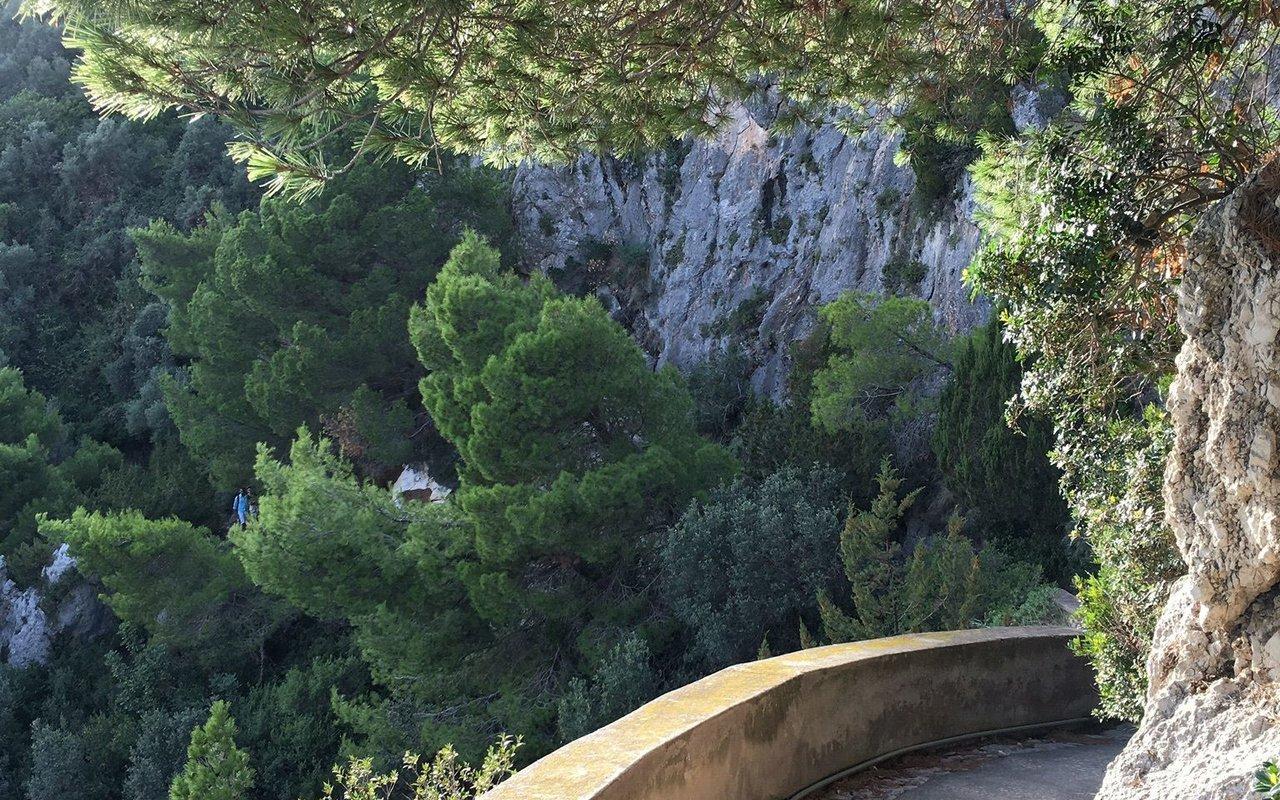 AWAYN IMAGE Discover the Enchanting Charm of Giardini di Augusto