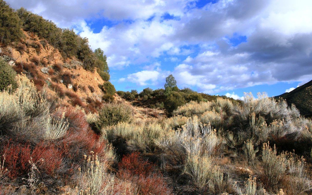 AWAYN IMAGE Sespe Wilderness
