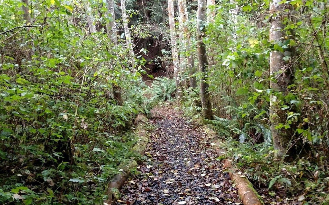 AWAYN IMAGE North Kitsap Heritage Park