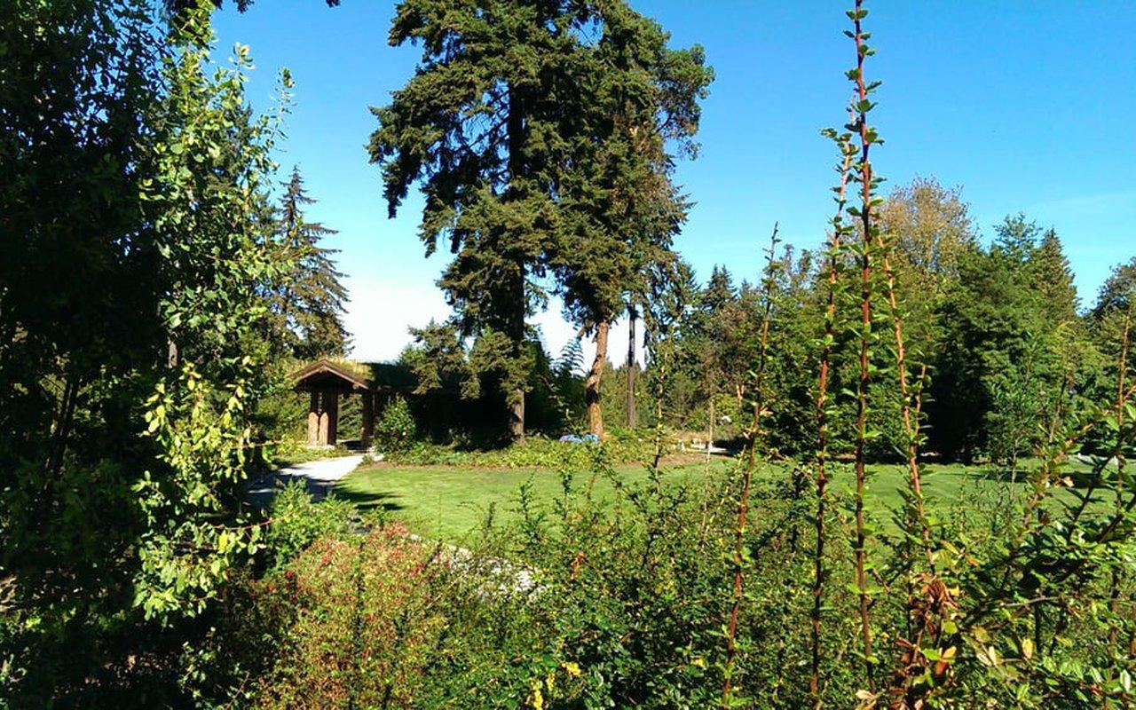 AWAYN IMAGE Washington Park Arboretum
