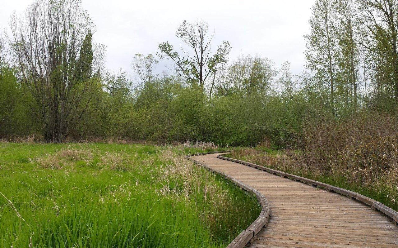 AWAYN IMAGE Mercer Slough Nature Park