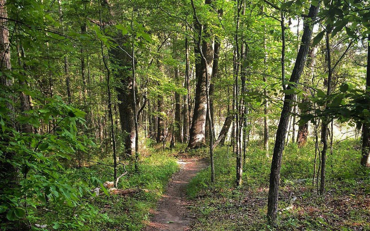 AWAYN IMAGE Sherman Branch Trail