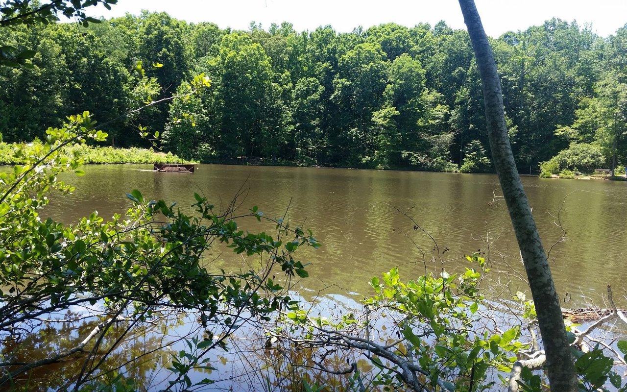 AWAYN IMAGE Reedy Creek Nature Preserve Trail