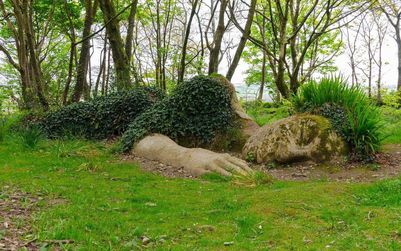AWAYN IMAGE Walk in The Lost Gardens of Heligan