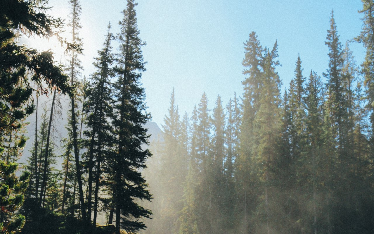 AWAYN IMAGE Bald Hills Trail Loop Hike