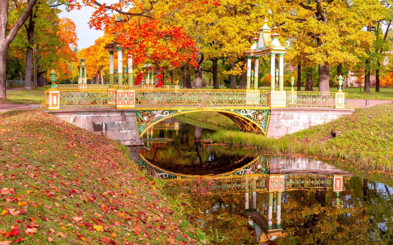 AWAYN IMAGE Walk around Alexander Park
