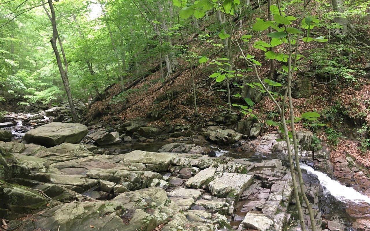 AWAYN IMAGE Great Falls Loop Trail