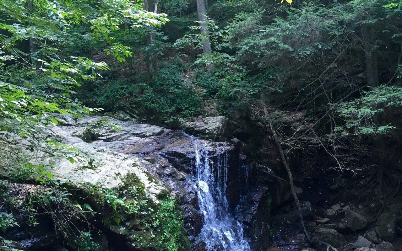 AWAYN IMAGE Hike: Avalon Loop Trail