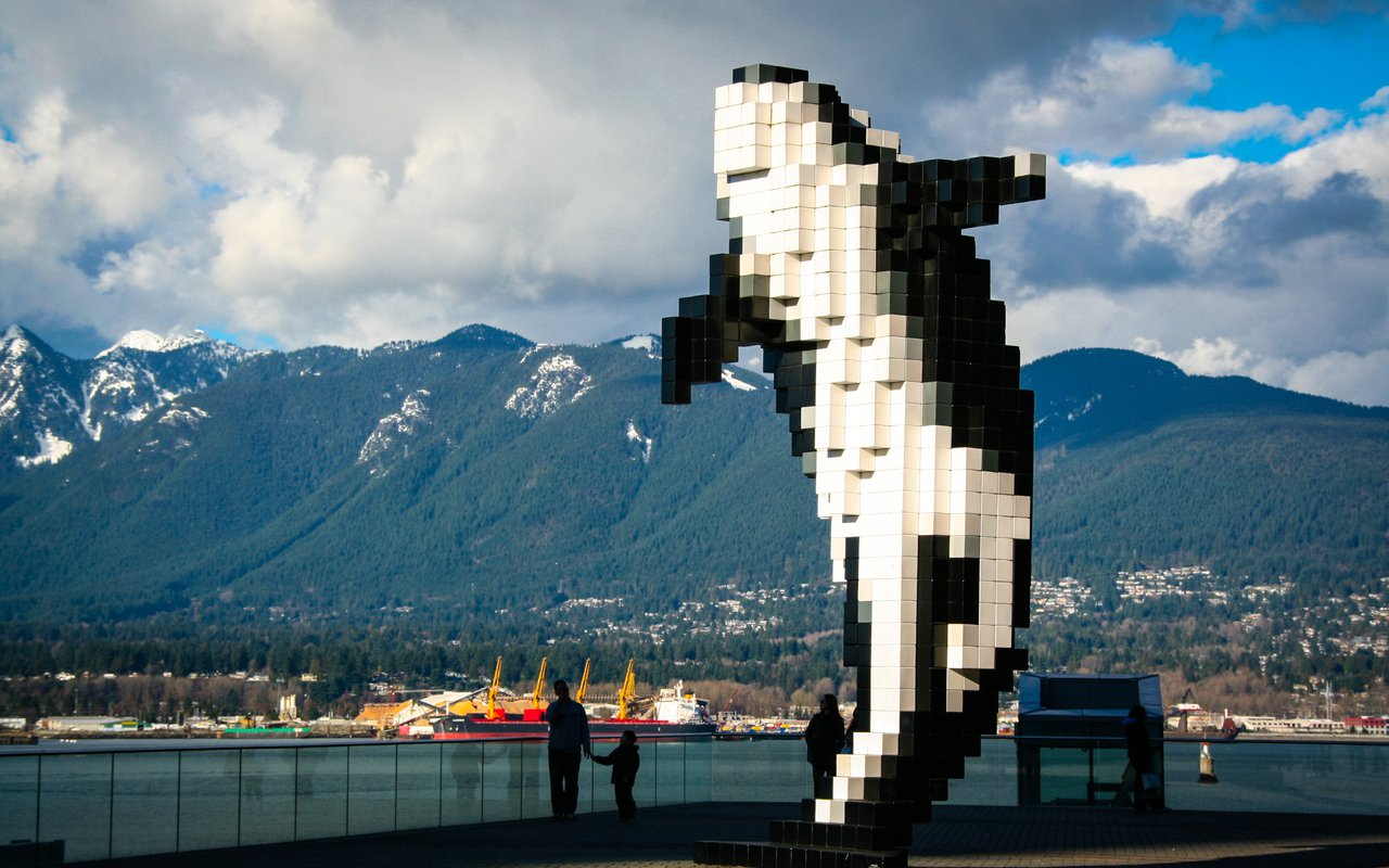 AWAYN IMAGE Digital Orca Whale Vancouver