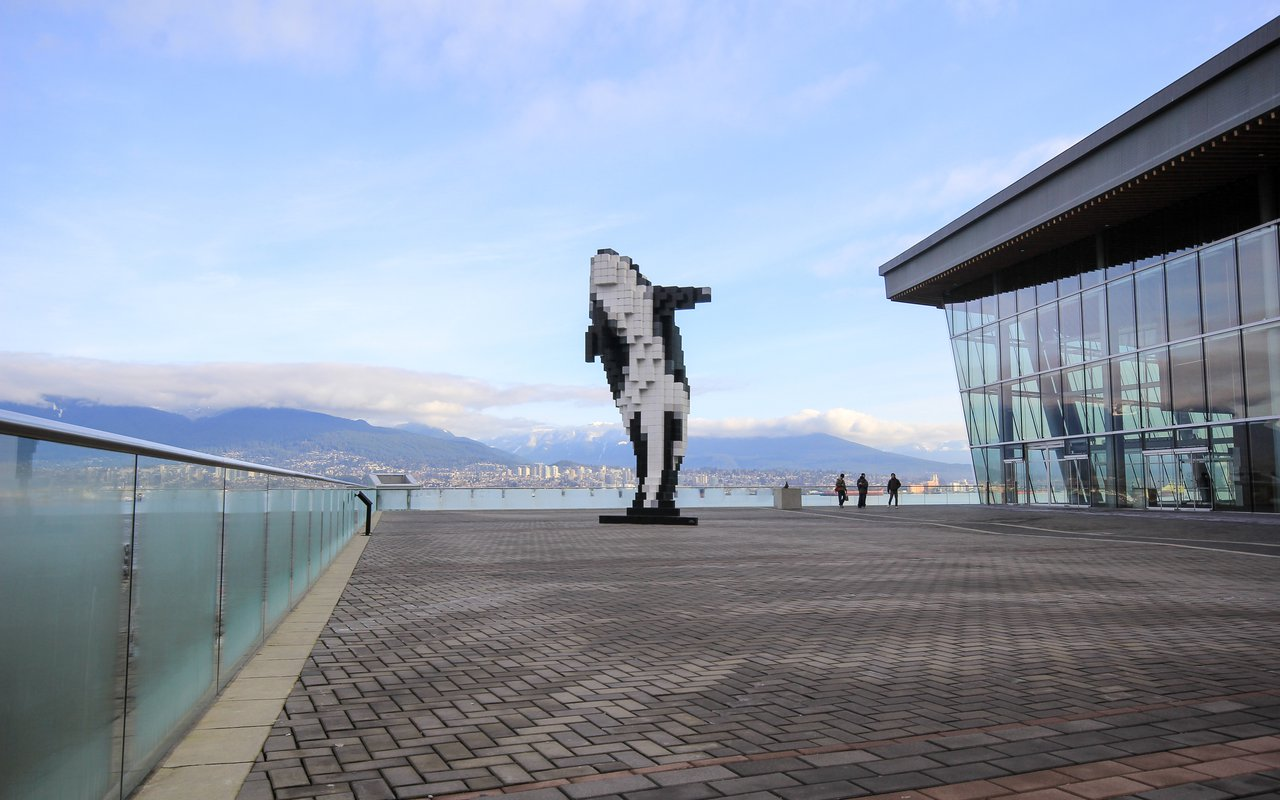 AWAYN IMAGE Digital Orca Whale Vancouver