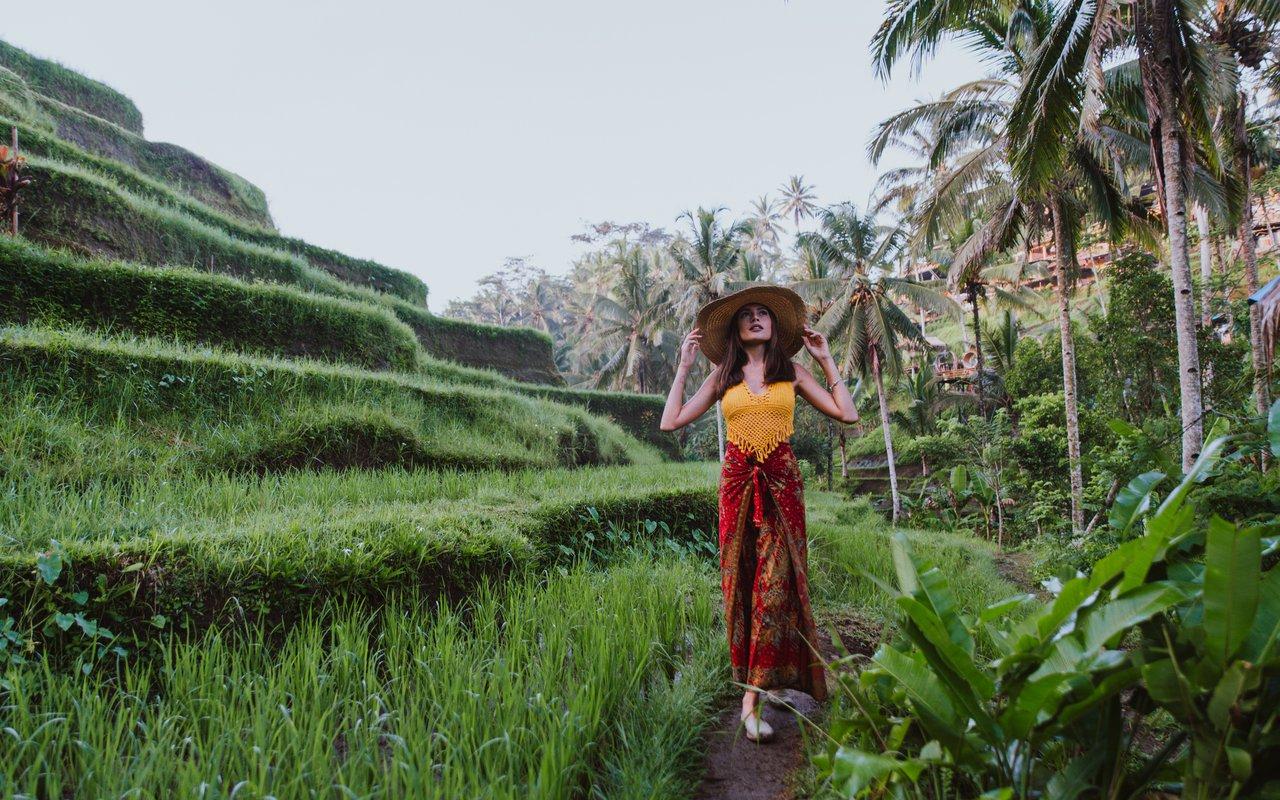 AWAYN IMAGE Visit Jatiluwih Green Land Rice fields