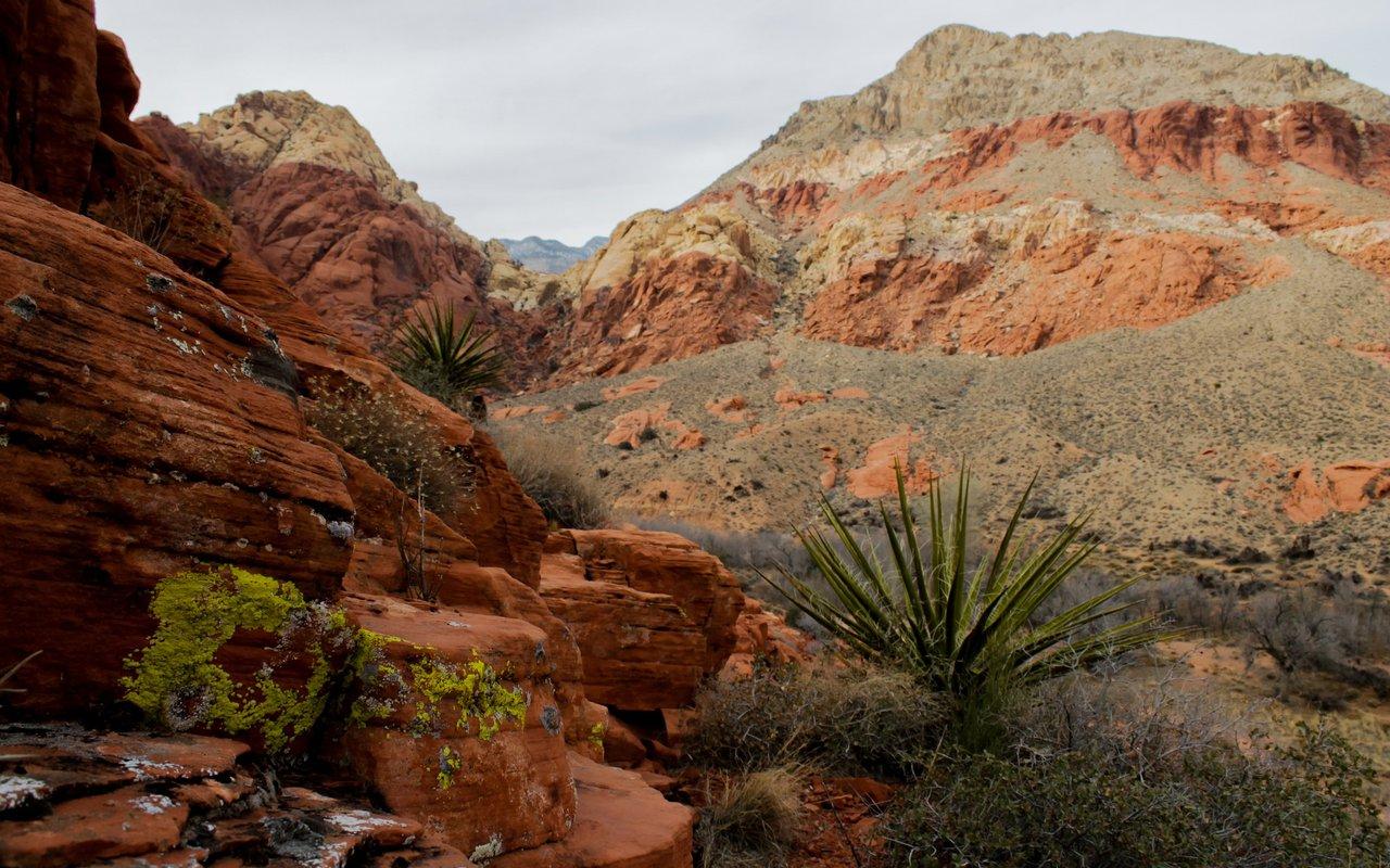 AWAYN IMAGE Red Canyon Trailhead