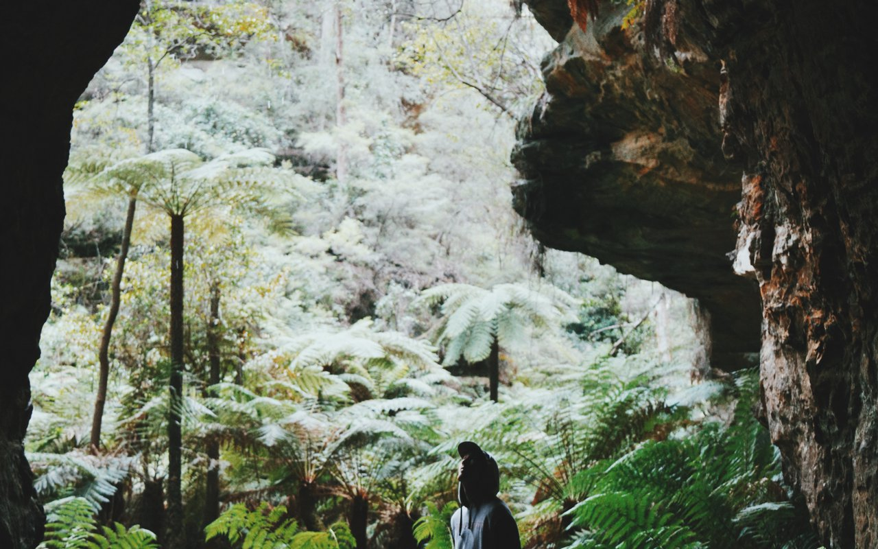AWAYN IMAGE Glow Worm Cave, Blue Mountains National Park Hike
