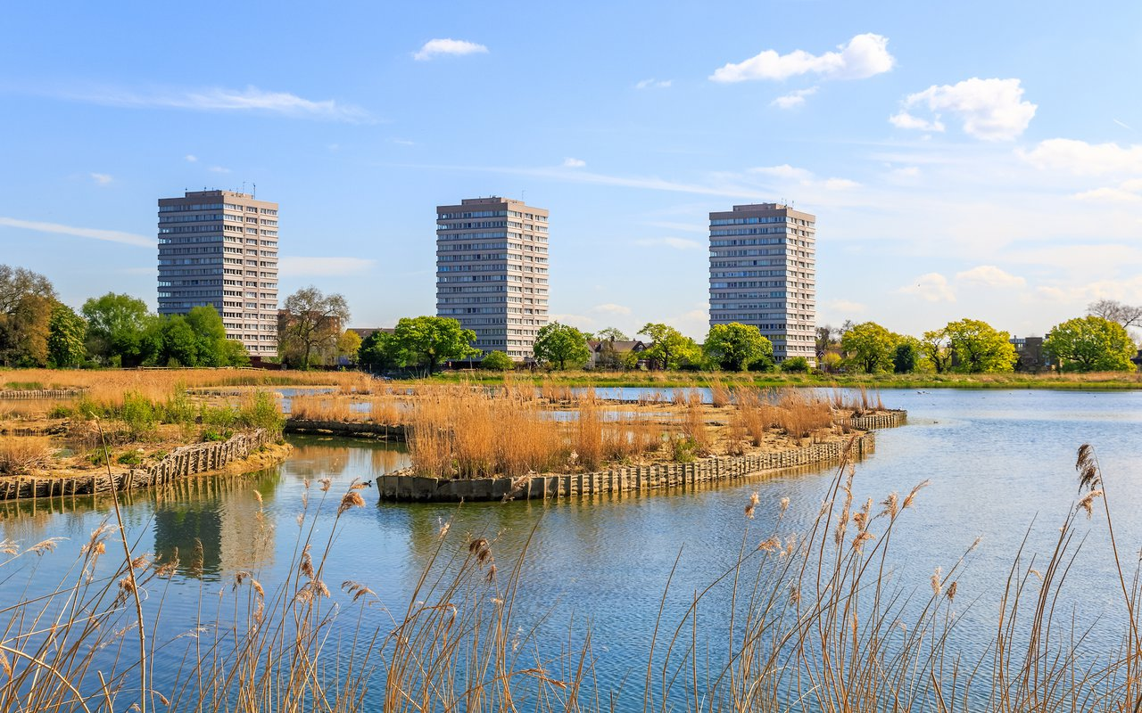 AWAYN IMAGE Woodberry wetlands in London