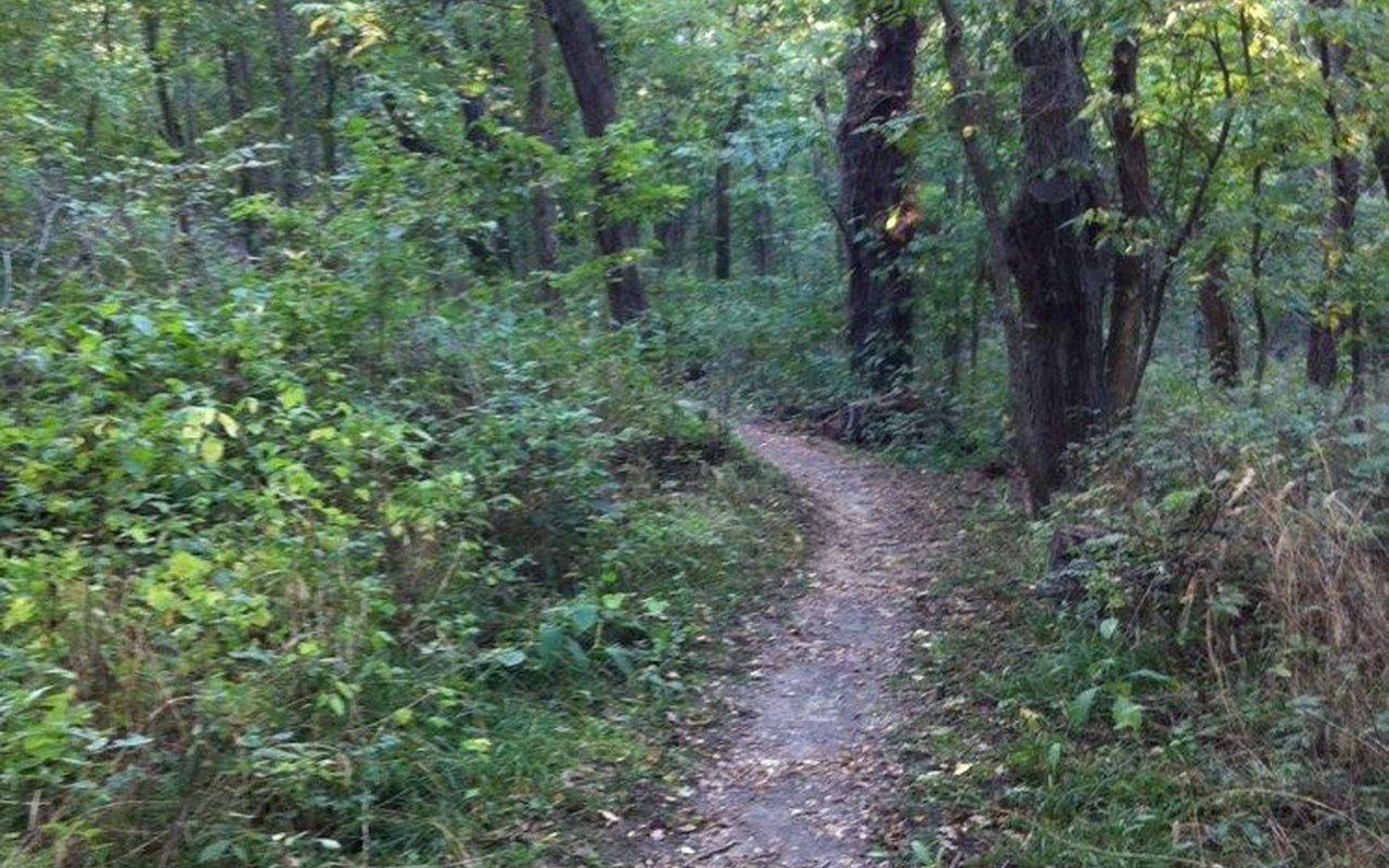 AWAYN IMAGE Stocksdale Park Trail