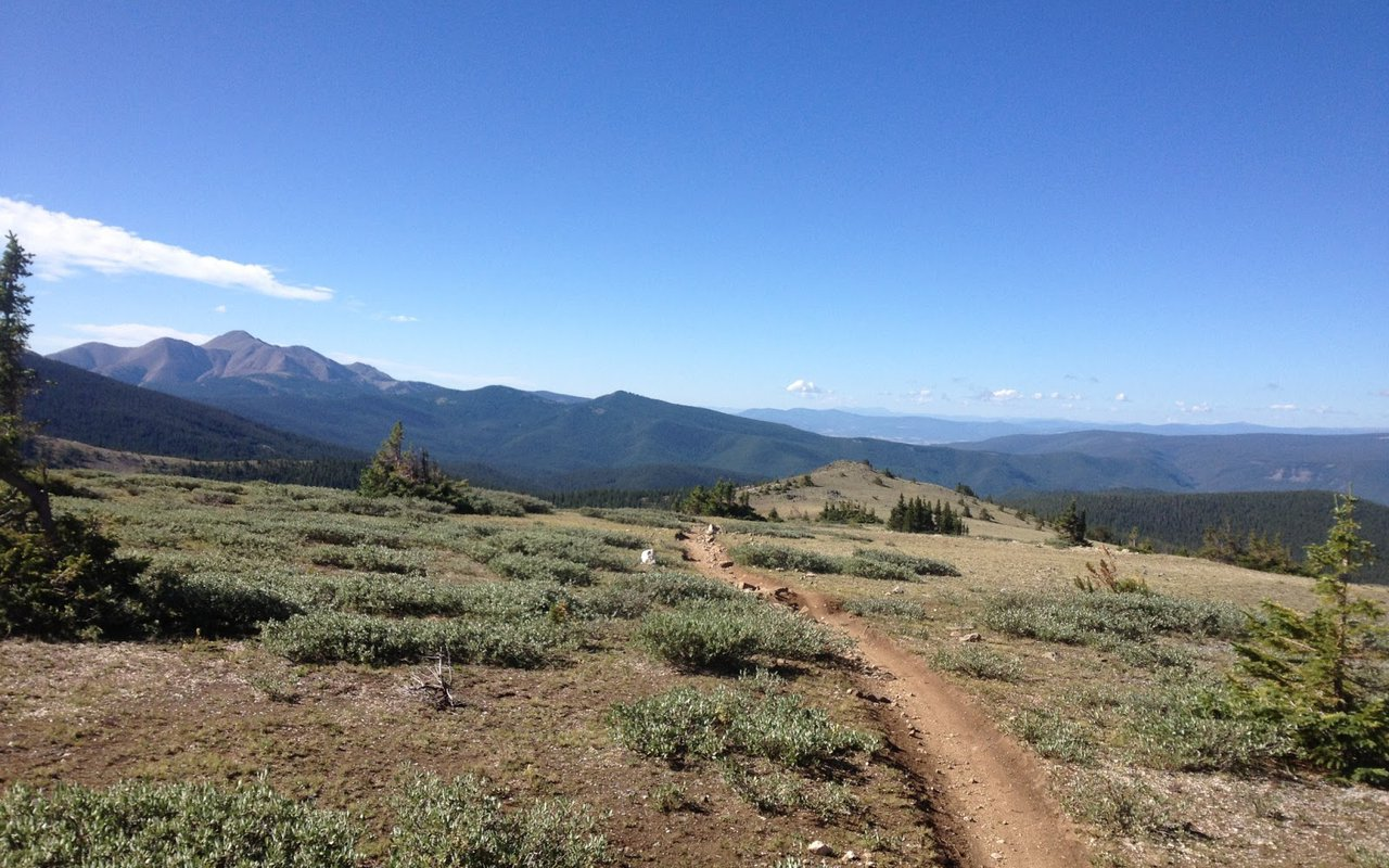 AWAYN IMAGE Singletrack Monarch Crest Trail