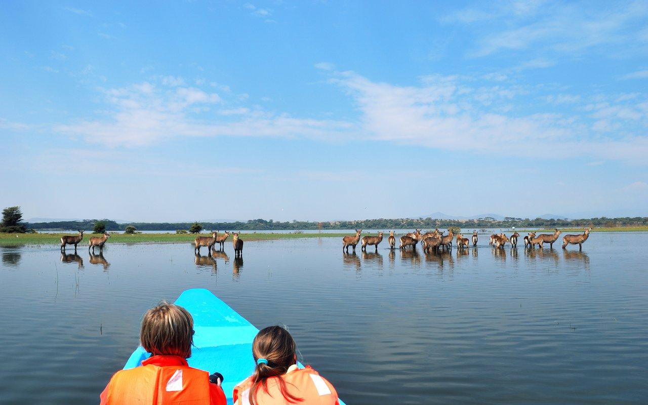 AWAYN IMAGE Naivasha Lake
