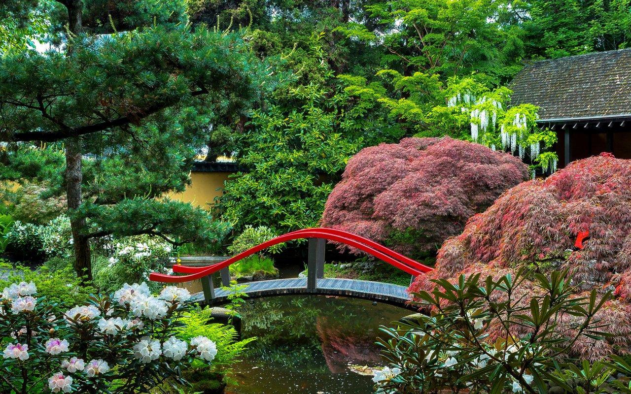 AWAYN IMAGE Stroll around Park and Tilford Gardens