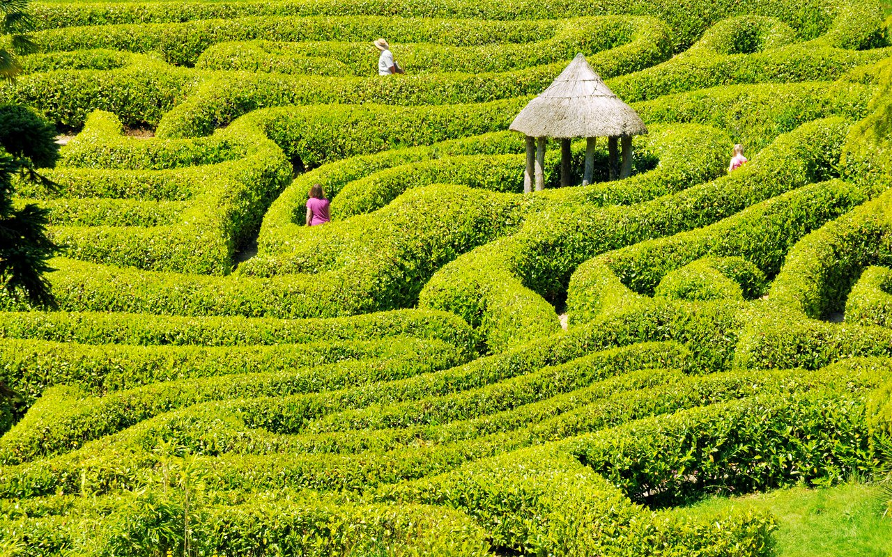 AWAYN IMAGE Discover Longleat Hedge Maze
