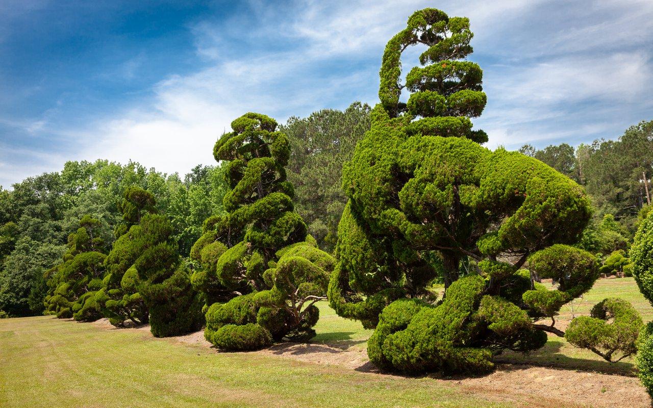 AWAYN IMAGE Pearl Fryer Topiary Garden