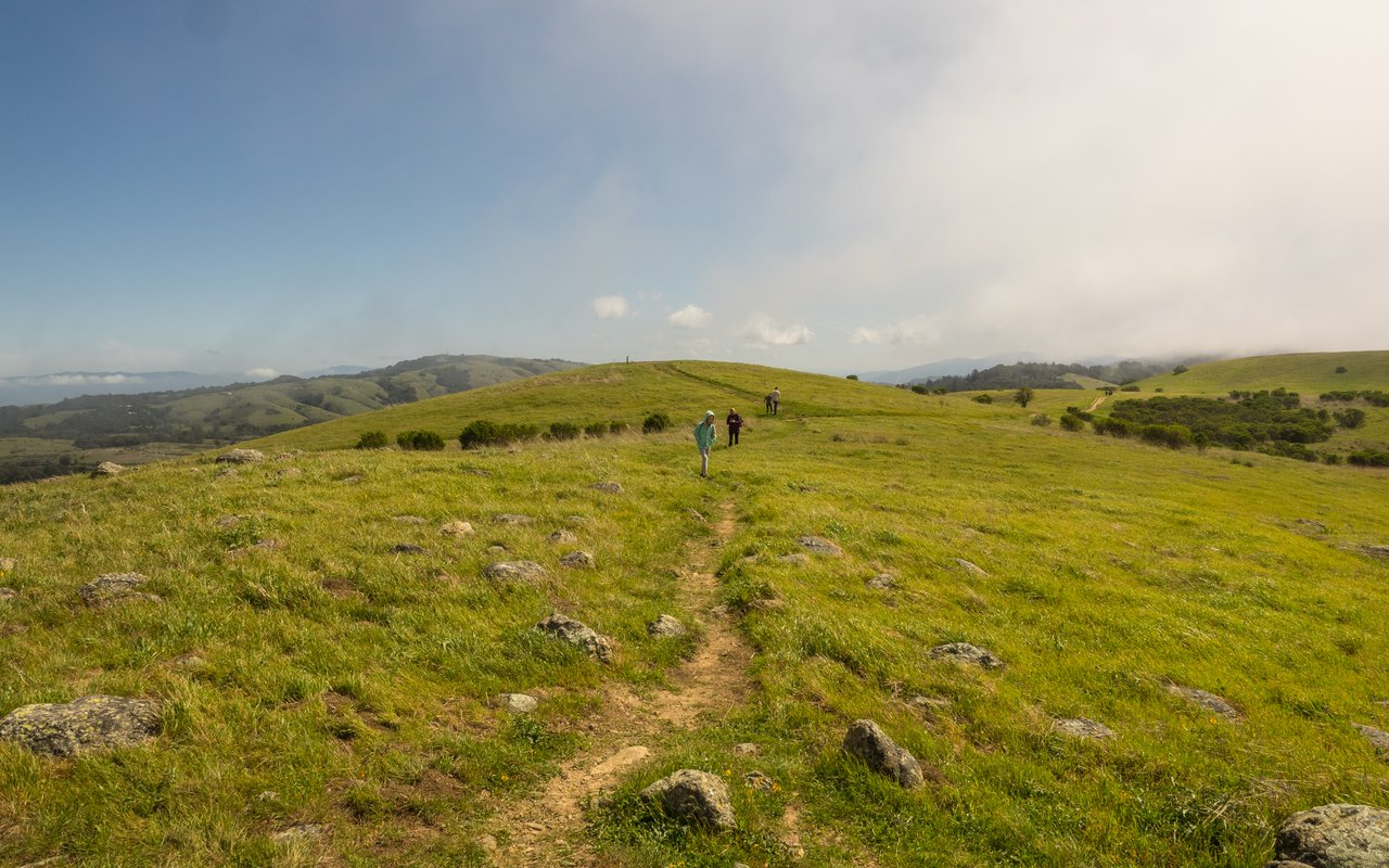 AWAYN IMAGE Hike to Russian Ridge Open Space, SC