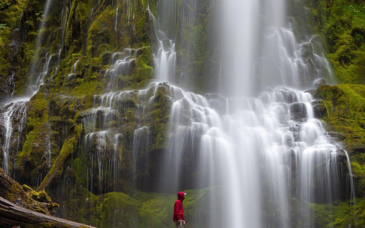 AWAYN IMAGE Hike to Proxy Falls Loop Trail