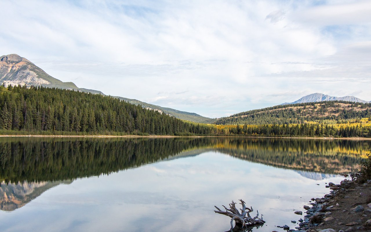 AWAYN IMAGE Patricia Lake