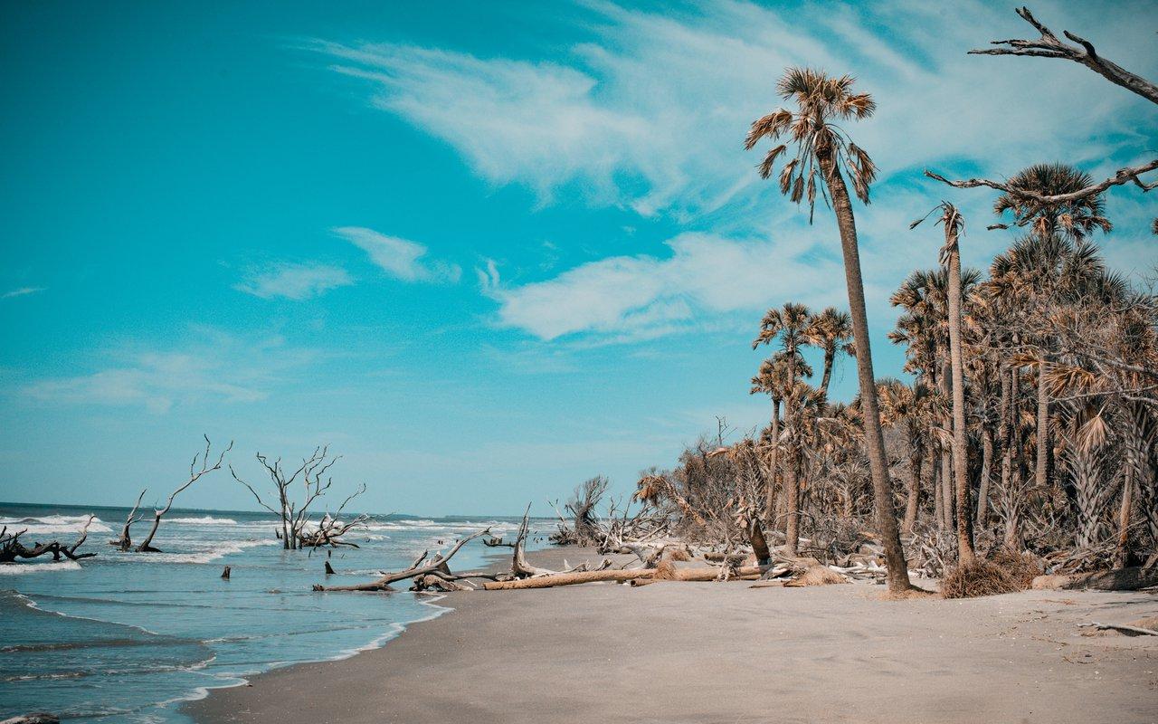 AWAYN IMAGE Visit Bulls island Beach