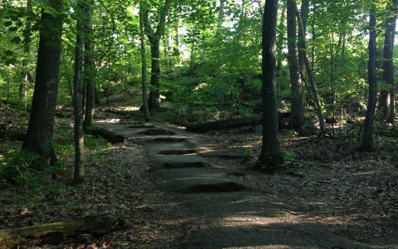 AWAYN IMAGE East Bluff Trail Loop